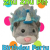 Zhu Zhu Pets Birthday Party