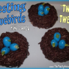 How to Make Nesting Bluebirds Mini Cakes