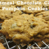 Oatmeal Chocolate Chip Pumpkin Cookie Recipe